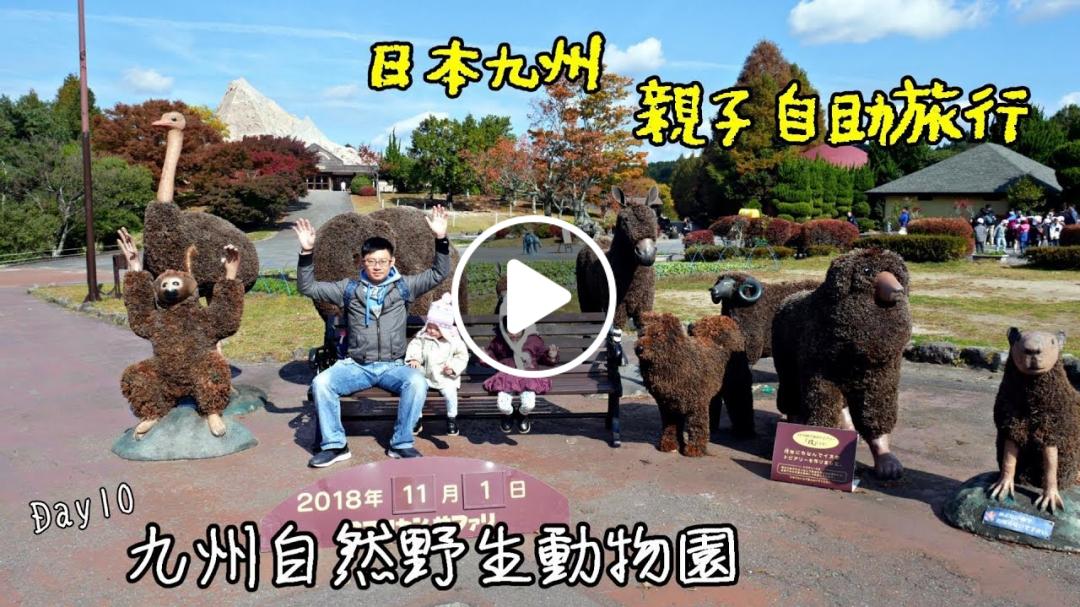 林林夫妻/日本九州親子旅遊超推薦 九州自然野生動物園 全中文解說的叢林巴士